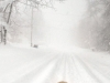 25-snow